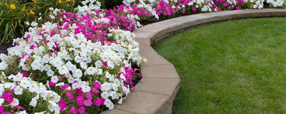 flower-landscaping